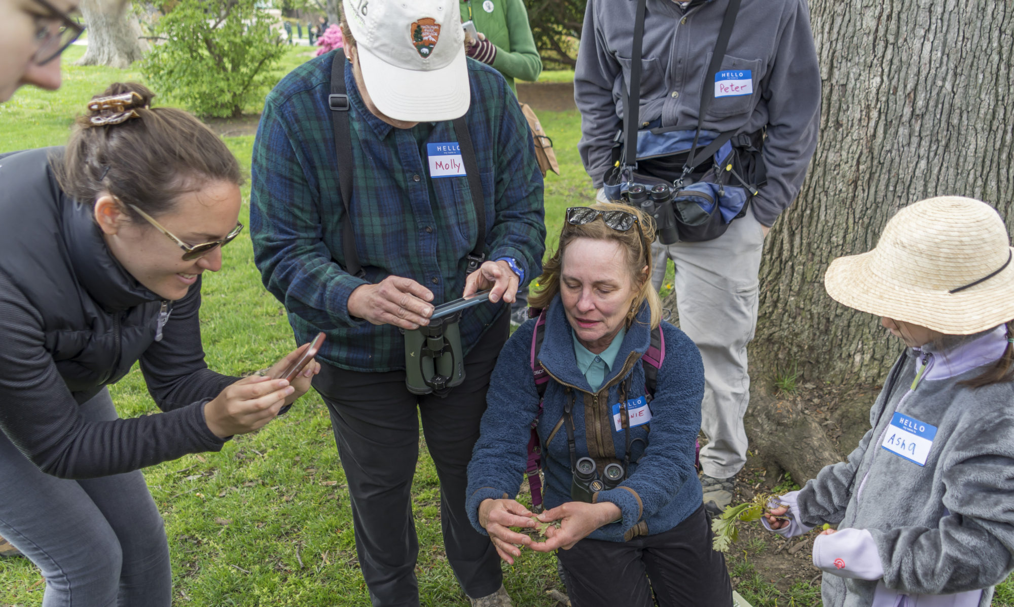 City Nature Challenge Washington DC |  April 26-29, 2019